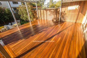 spotted gum floor with intergrain